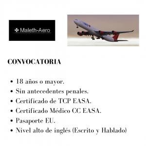 La aerolínea Maleth-Aero busca actualmente tripulantes de cabina.
